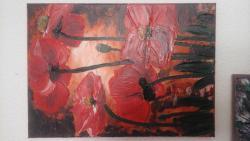 Picturi cu flori maci in cutit