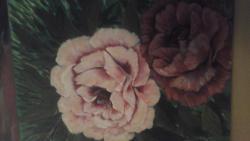 Picturi cu flori roz si rosu