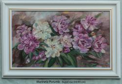 Picturi cu flori Bujori roz,2013