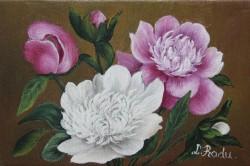 Picturi cu flori Bujori miniatura