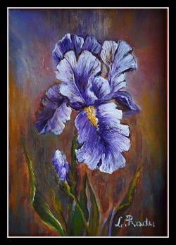 Picturi cu flori Stanjenel violet