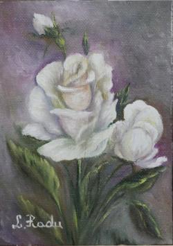 Picturi cu flori White Rose