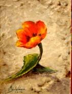 Picturi cu flori Lalea