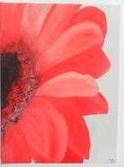 Picturi cu flori Gerbera 1