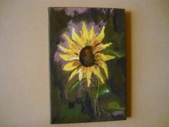 Picturi cu flori Floarea soarelui 2