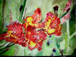 Picturi cu flori Gladiole rosii 2014
