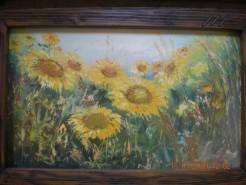 Picturi cu flori Camp cu floarea soarelui