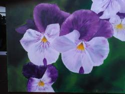 Picturi cu flori Trei frati patati