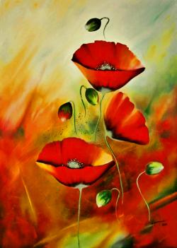 Picturi cu flori Poveste cu maci