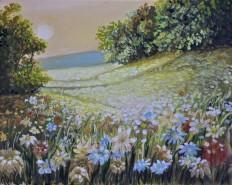 Picturi cu flori Apus pe camp