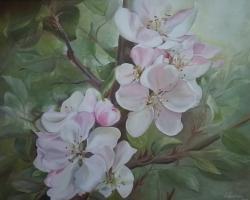 Picturi cu flori flori de mar  1