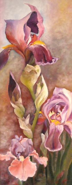 Picturi cu flori Irisi mov