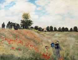 Picturi cu peisaje  maci