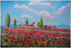Picturi cu peisaje Satul macilor