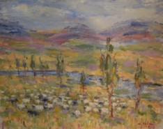 Picturi cu peisaje Mioare