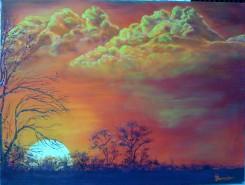Picturi cu peisaje Feng shuie...paparude