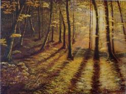 Picturi cu peisaje La priveghi