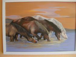 Picturi cu peisaje cai la adapat