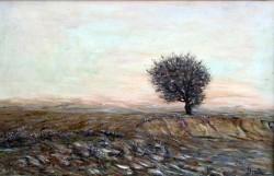 Picturi cu peisaje Solitarul.8