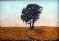 Picturi cu peisaje Solitarul1