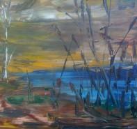 Picturi cu peisaje Iazul