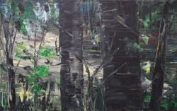 Picturi cu peisaje Padure de fagi