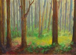 Picturi cu peisaje Mica poiană
