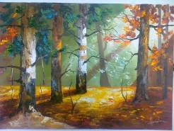 Picturi cu peisaje Luminis 1
