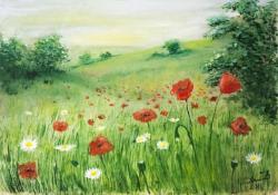 Picturi cu peisaje maci si flori de camp