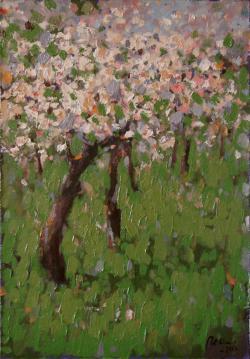 Picturi cu peisaje Pomi infloriti1