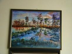 Picturi cu peisaje Parcul national suedez