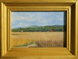 Picturi cu peisaje lanuri