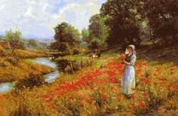 Picturi cu peisaje La cules de maci