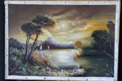 Picturi cu peisaje Vis106