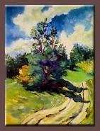Picturi cu peisaje Drum de tara