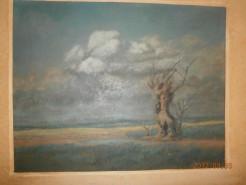 Picturi cu peisaje Scorbura in camp