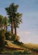 Picturi cu peisaje Iesirea din padure