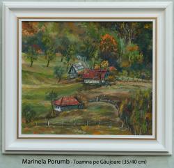 Picturi cu peisaje Toamna pe Gaujoare 2