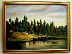Picturi cu peisaje Balta brailei1