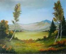 Picturi cu peisaje Valceaua