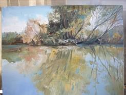 Picturi cu peisaje Delta5