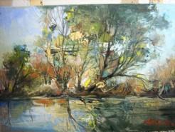 Picturi cu peisaje Delta 2