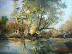 Picturi cu peisaje Delta 7
