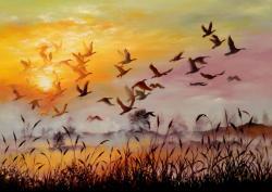 Picturi cu peisaje Freedom