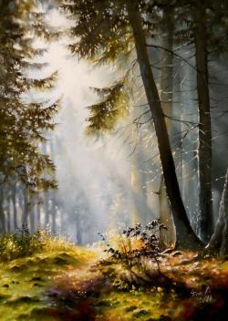 Picturi cu peisaje sunshine