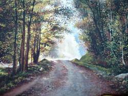 Picturi cu peisaje drum in zanoaga