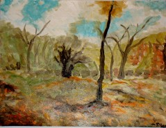 Picturi cu peisaje Luminis