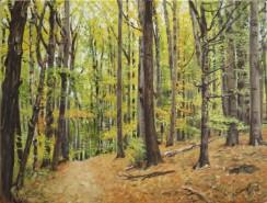 Picturi cu peisaje La pas prin padure