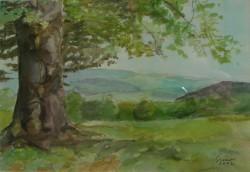 Picturi cu peisaje Copac in sine; fa egymagaban
