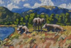 Picturi cu peisaje Vaci pe malul raului